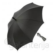 Teminis skėtis